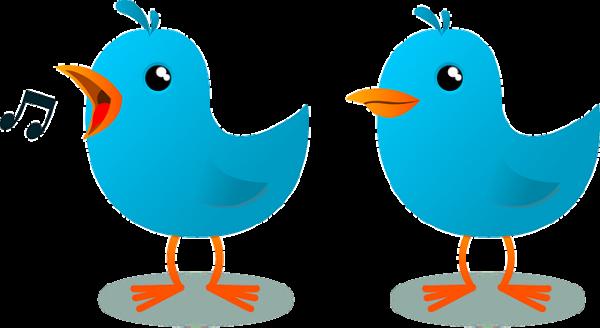Utiliza Twitter Analytics para saber quien te lee